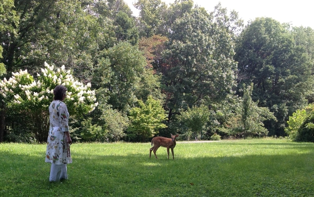 Dasi & Deer