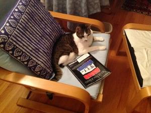 Kalman: Sophisto-Cat
