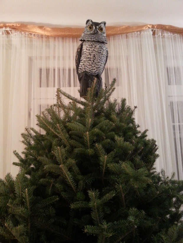Doesn't every Christmas tree need an owl?