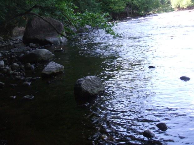 Wolf River Eddy